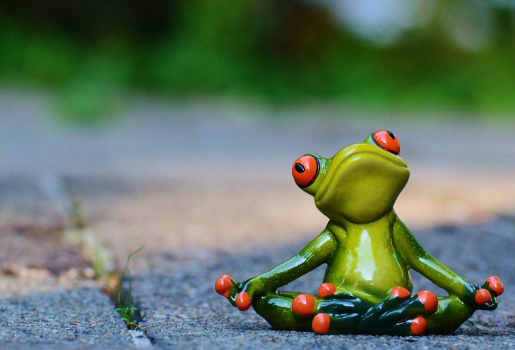 yoga, frog, relaxed
